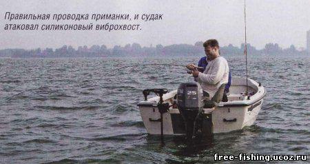 судак ловить отвес с лодки